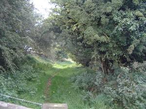 Railwalkpath4190