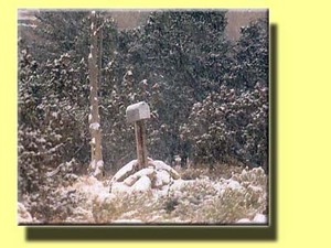 25_dec_04_christmas_mailbox_in_snowb