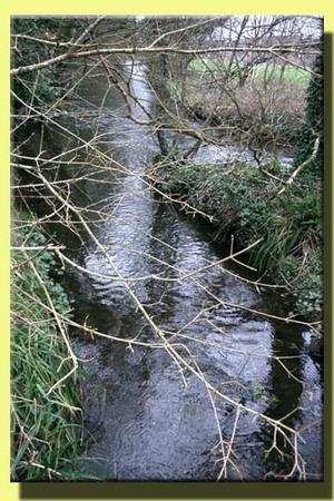 Blarney_casle_stream