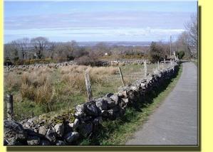 The_lane_to_bronwyn